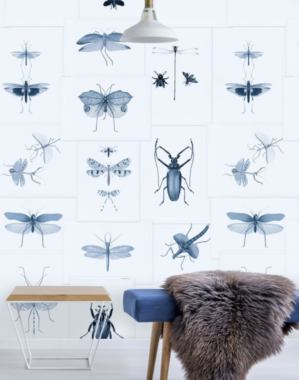 Entomology blue 01 mind the gap behang den haag frederikpremier interieurwinkel