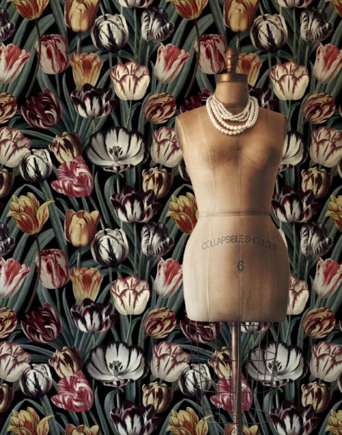 Tulipa dark 01 mind the gap behang den haag frederikpremier interieurwinkel